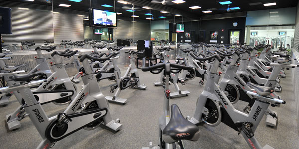 Cycle Studio