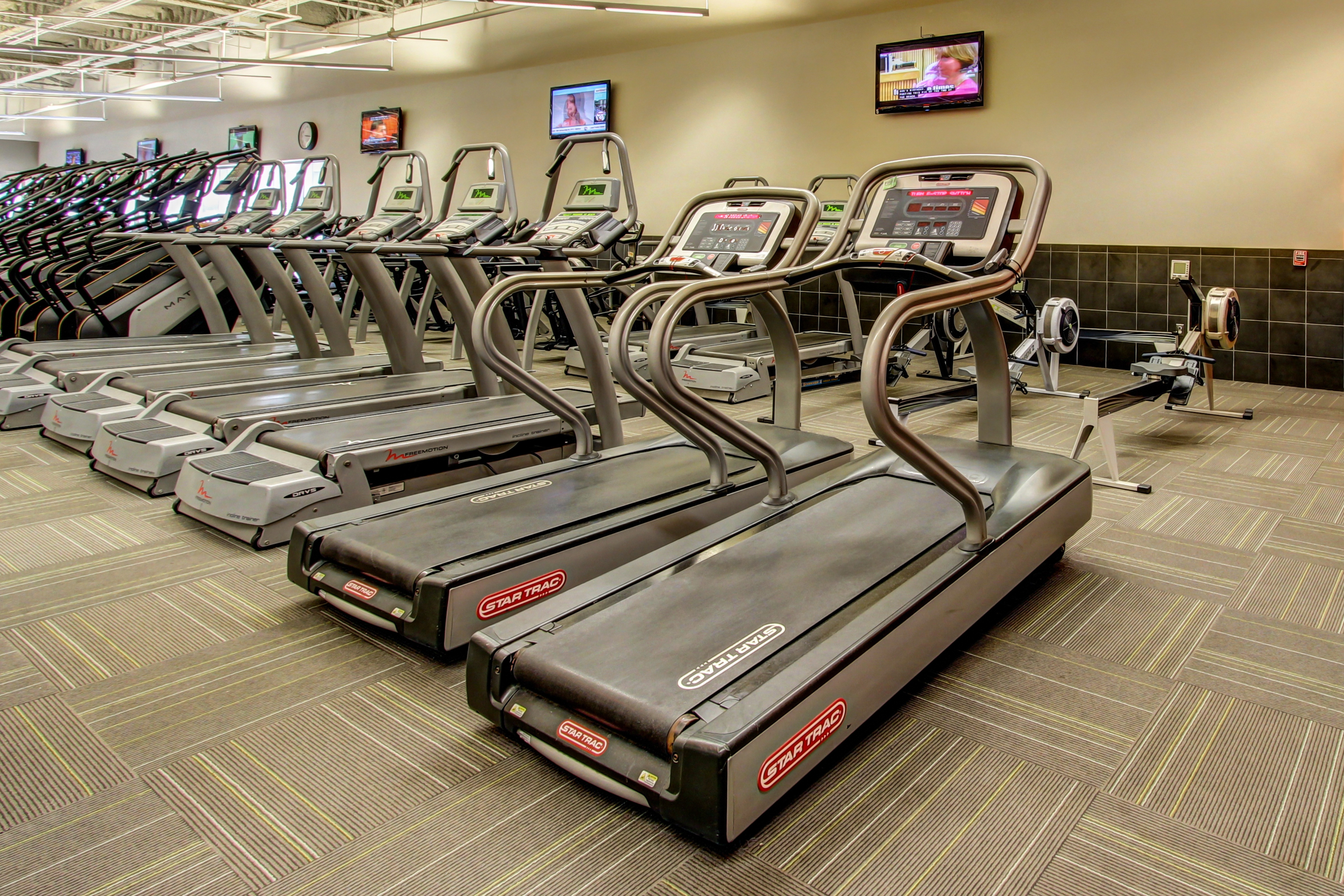Stafford Cardio Equipment