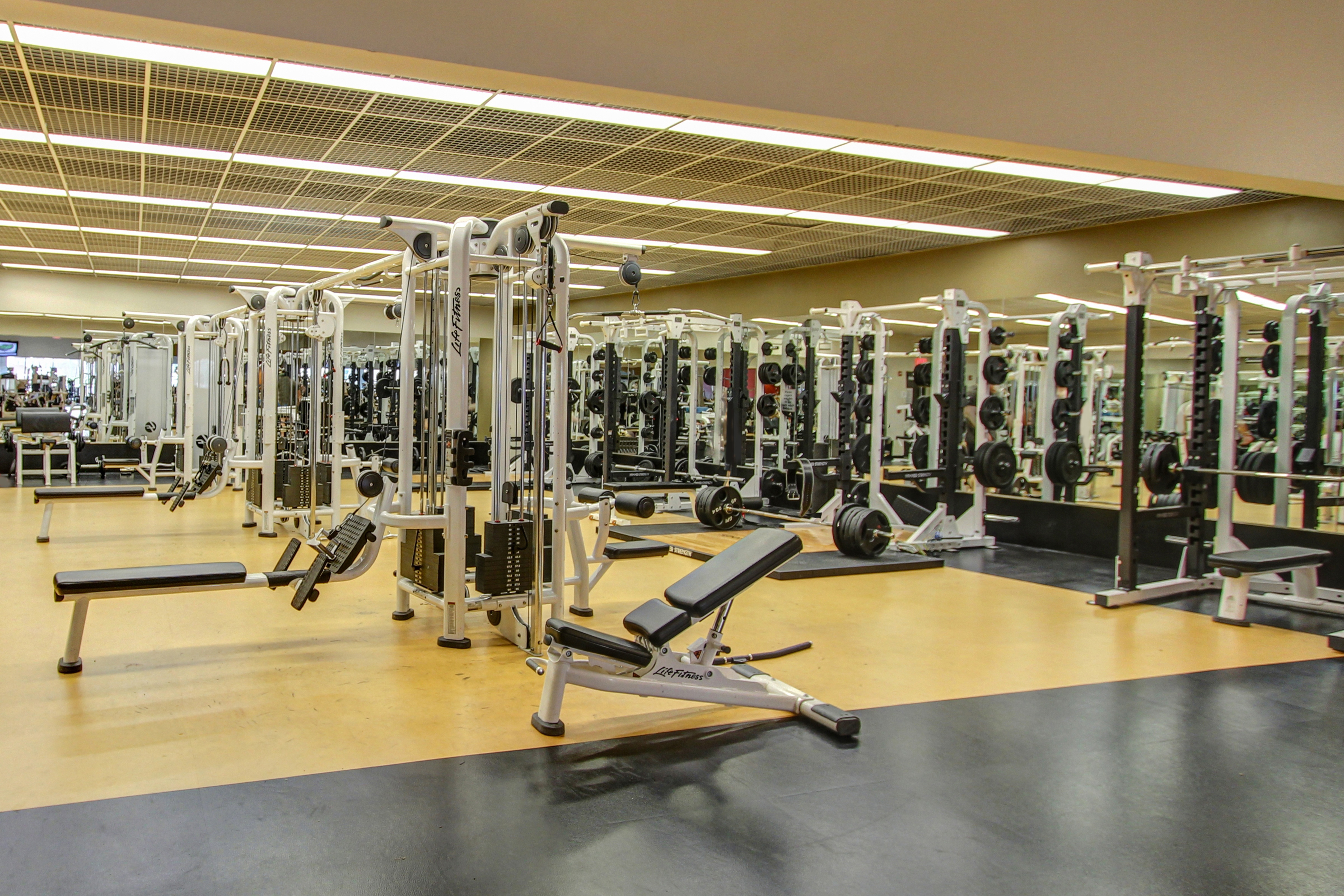 Stafford Fitness Floor